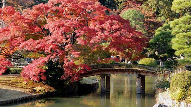 El otoño mágico de Tokio
