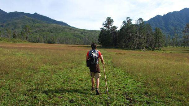 Explora el corazón verde de la República Dominicana