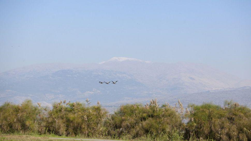 Reinventando el turismo: Zonas de Israel menos concurridas pero igual de interesantes