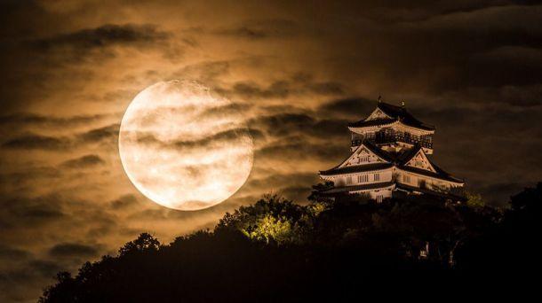 Contemplar la luna de otoño en Japón