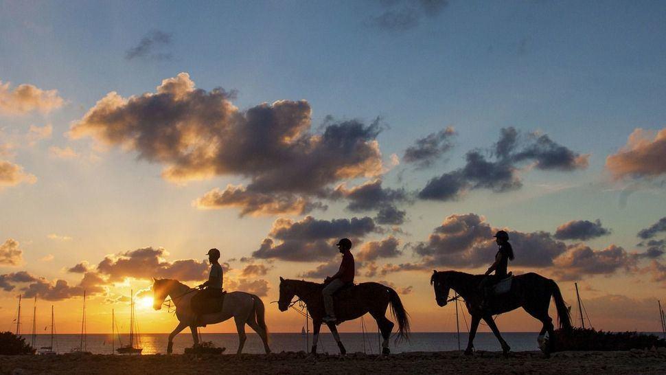 Formentera a caballo, escapada sana y natural